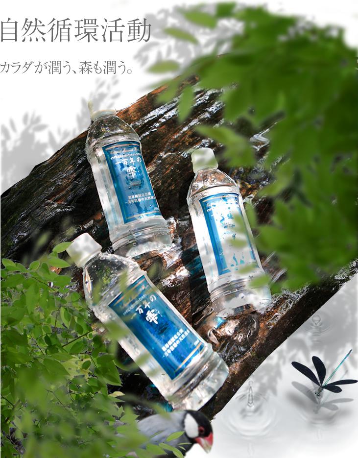カラダが潤う、森も潤う。森と自然を守る自然循環活動